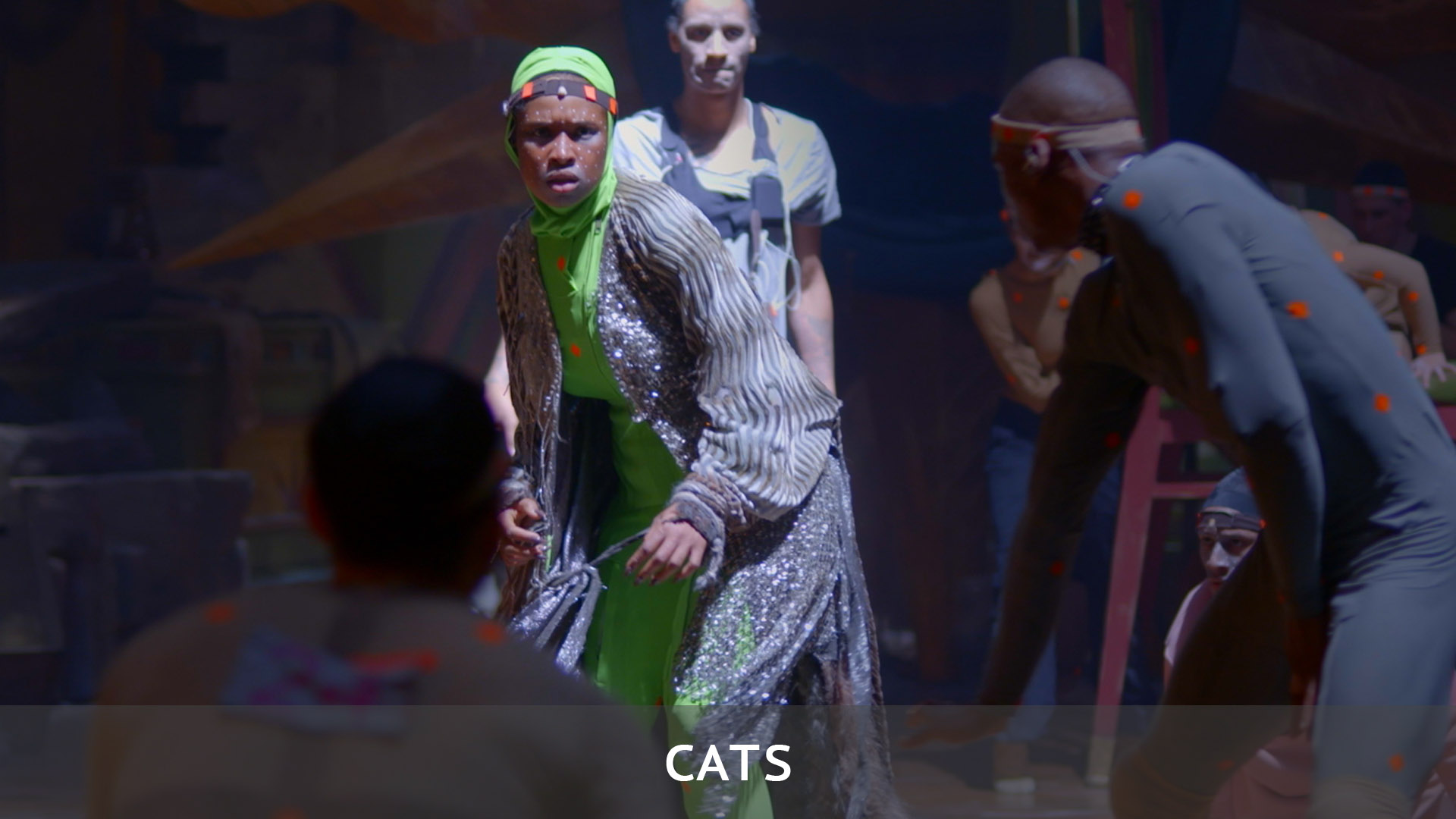 Cats - Color Grading / Color Correction / Post Production